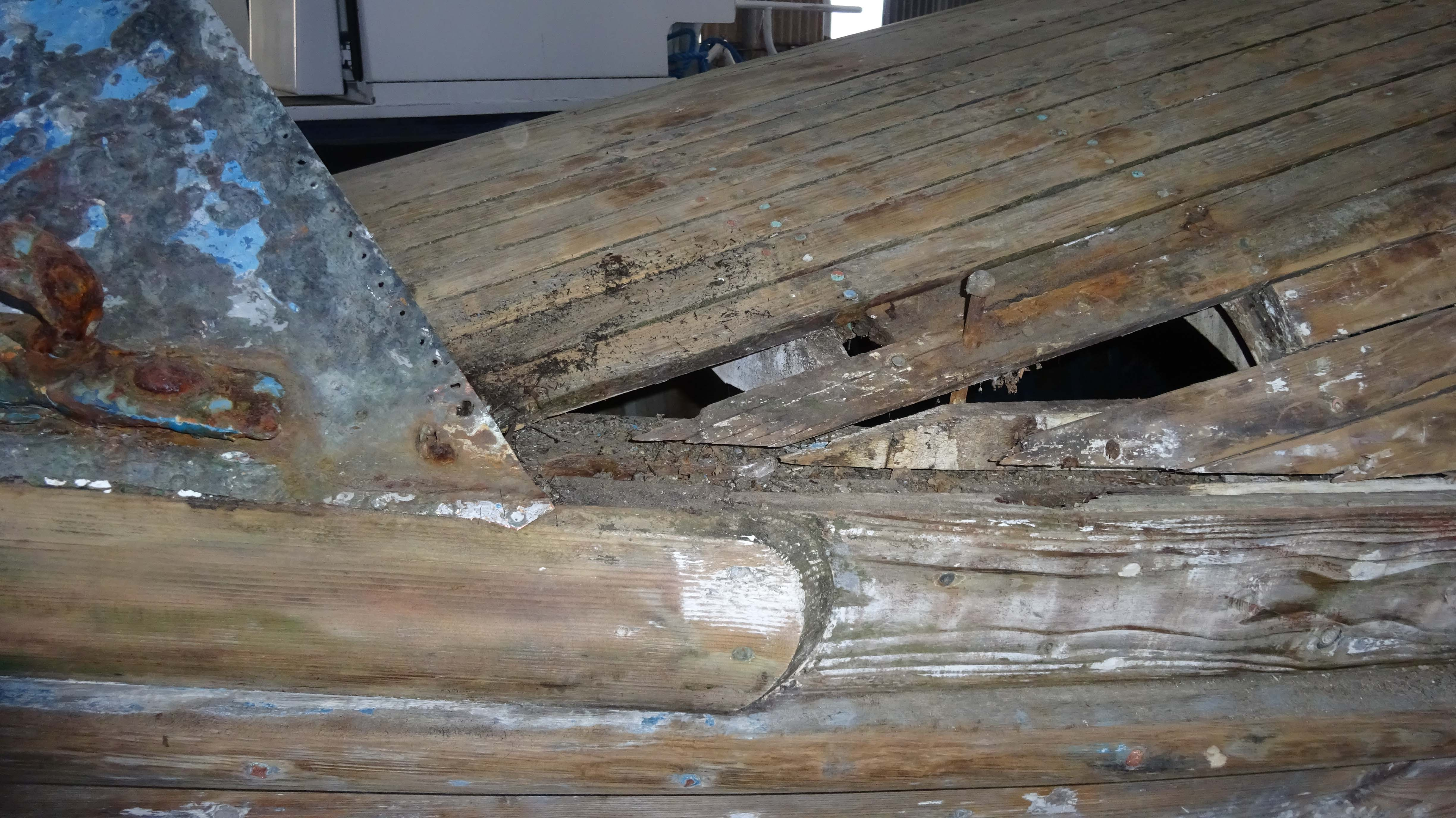 Rotten wood removed from foredeck